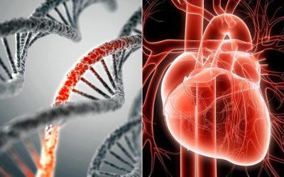 Test Genetico per le patologie cardiovascolari